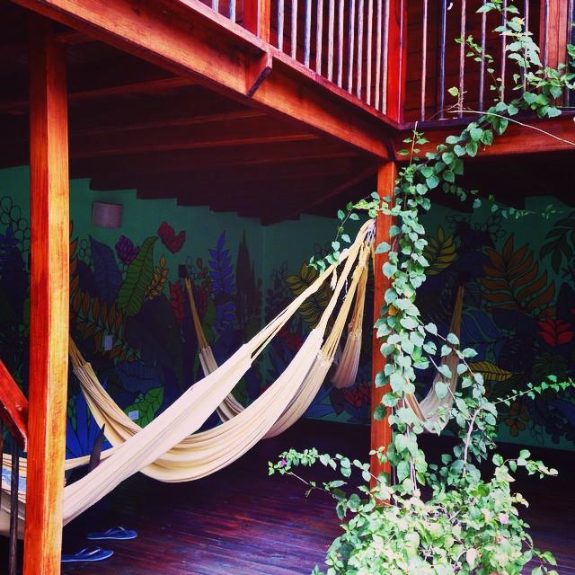 casa kiwi medellin